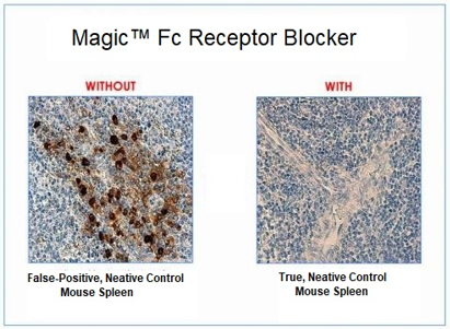 Magic™ Fc receptor blocker